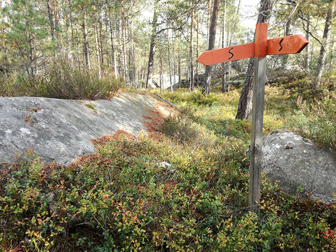 Sörmlandsleden mit Beeren und Wegweiser im Wald