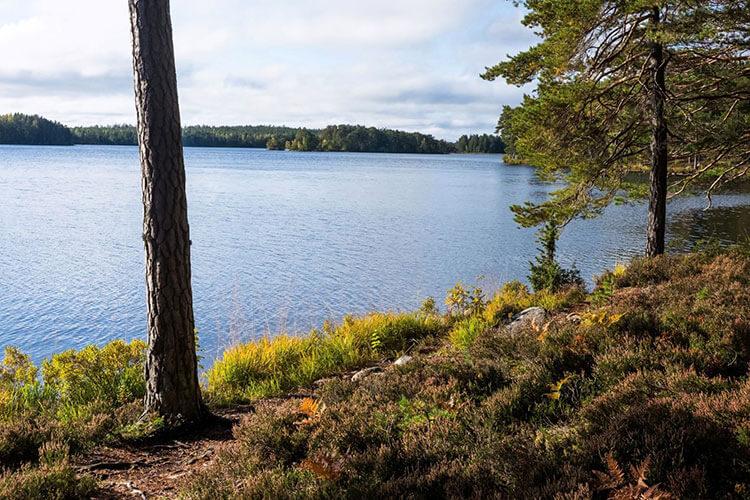 See am Trekkingweg Sörmlandsleden in Schweden
