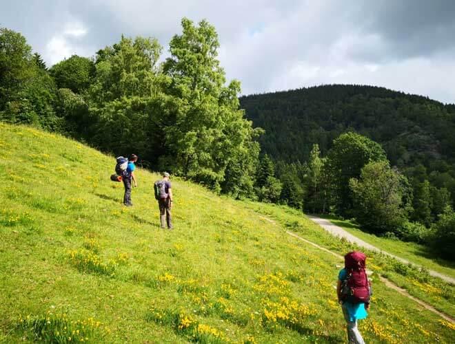 kleine Gruppe beim Trekking Schwarzwald