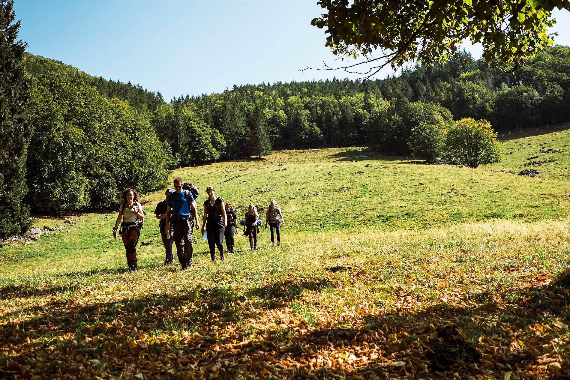 Wanderung beim Teamevent im Schwarzwald