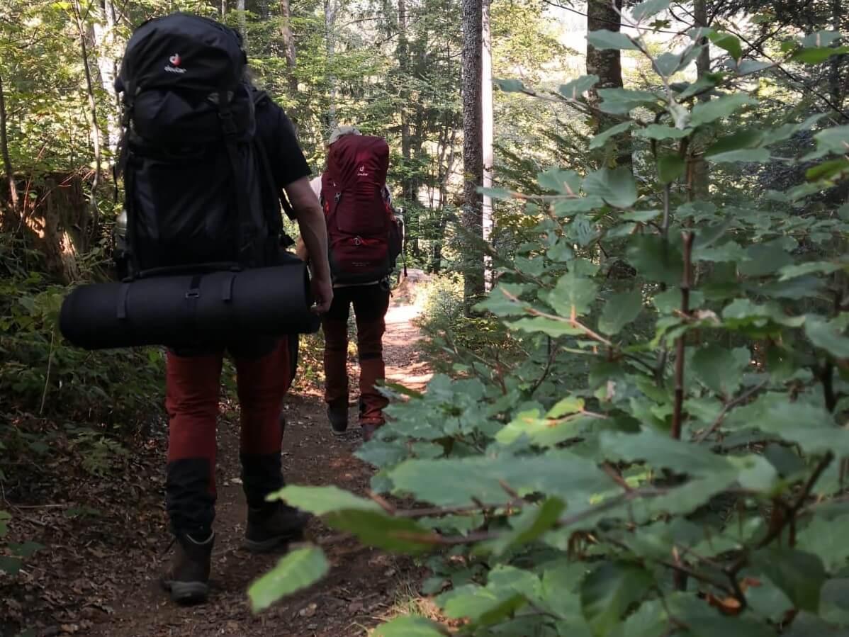 Trekking durch den Wald mit Trekkingrucksack
